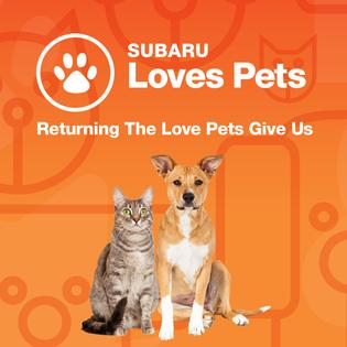 2017 Subaru Loves Pets