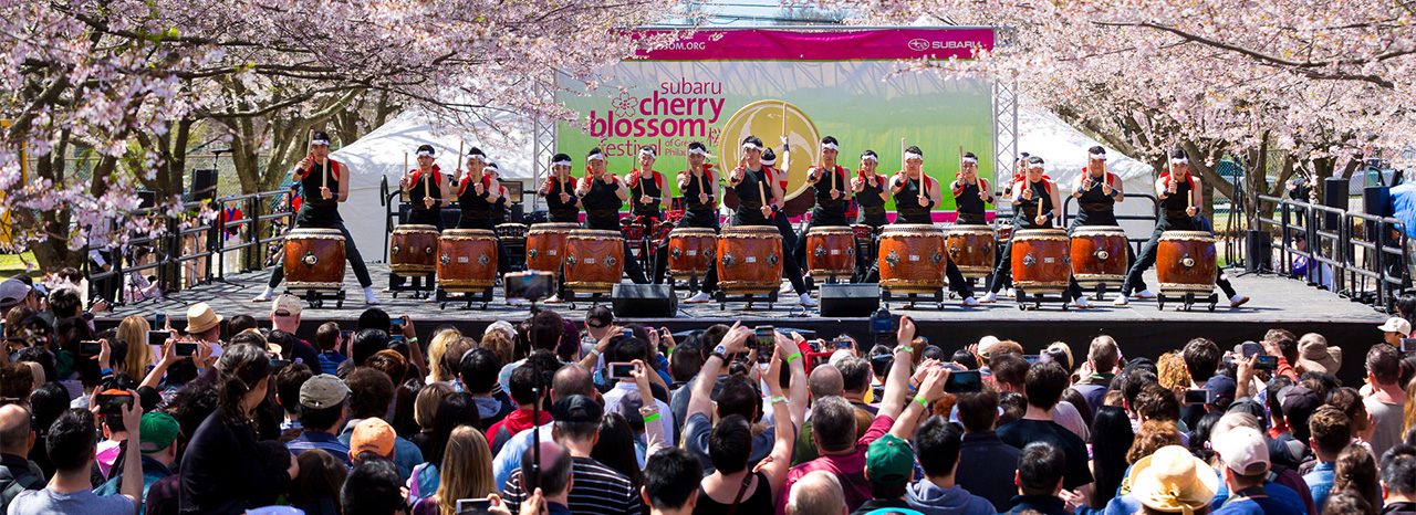 SUBARU OF AMERICA SALUTES SPRINGTIME AS THE RETURNING TITLE SPONSOR OF THE 2019 CHERRY BLOSSOM FESTIVAL IN PHILADELPHIA