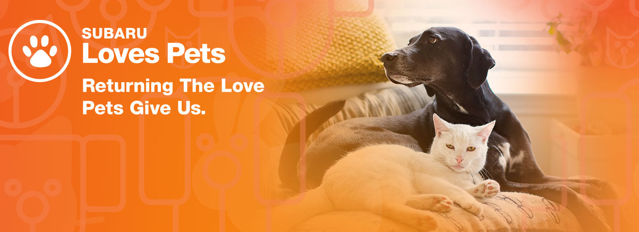 SUBARU HELPS SAVE THE LIVES OF PETS DURING 2018 LOS ANGELES AUTO SHOW